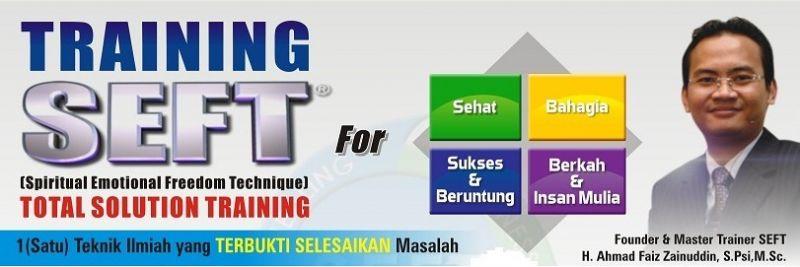 Program SEFT